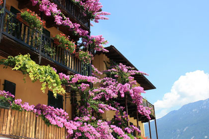 Haus in Limone